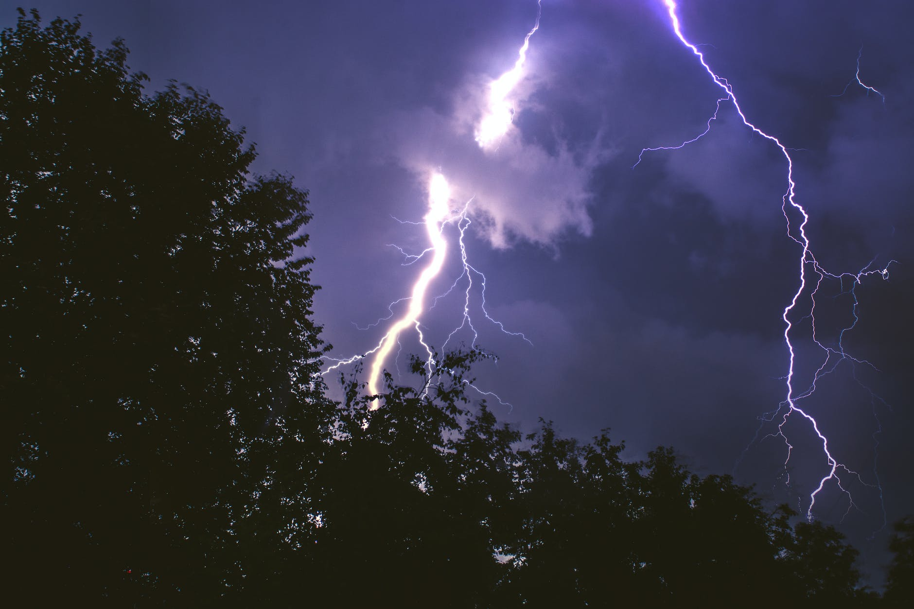 lightning strike on forest during night time